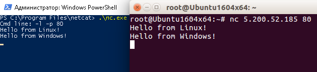 Hello from Linux! Hello from Windows!